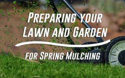 Preparing your Lawn and Garden for Spring Mulching