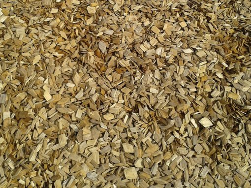 Regular Wood Chips